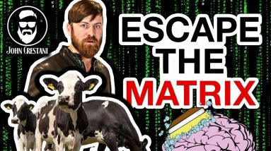 How To Escape The Matrix (And Stop Being Human Cattle)
